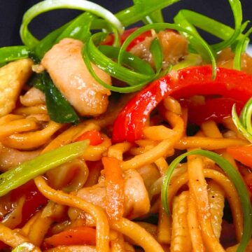 A close up view of Chinese style chicken noodles.