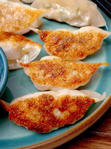 Pan fried japanese dumpling on the blue colour plates.