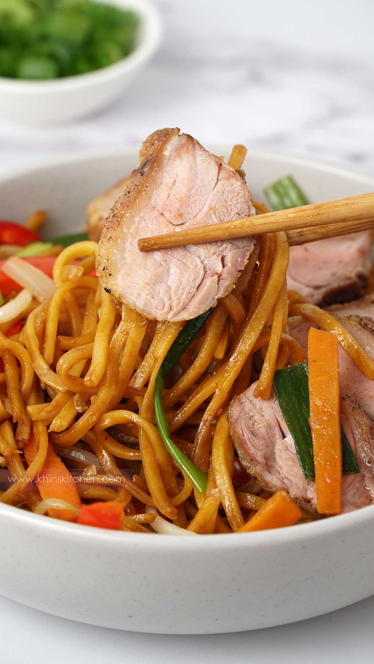 Chopsticks picking up duck and stir fried noodles.